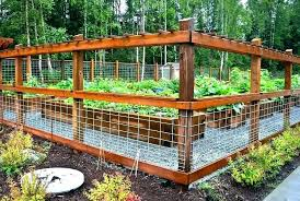 4x4 Hog Wire Panels Awesome Fence Ideas Installing The Hog Wire Fence Panels Home Depot Garden Fence Panels Diy Garden Fence Garden Bed Layout
