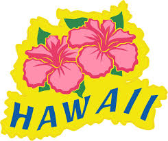 5in X 4 5in Flower Hawaii Bumper Sticker Car Vinyl Decal Truck Stickers Stickertalk