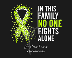 Gastroschisis Svg In This Family No One Fights Alone Svg Gastroschisis Awareness Svg Lime Green Ribbon Svg Fight Cancer Svg Digital Files Buy T Shirt Designs