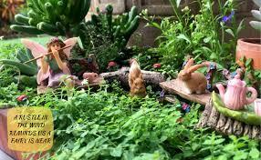 com pretmanns fairy garden