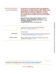 caspofungin susceptibility testing
