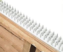 Primrose Fence And Wall Spikes White Cat Repellent Security Spikes Pack Of 8 By Pestbye Amazon Co Uk Garden Outdoors