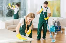 Individual Or Professional Cleaning Service – Which Is Better ...