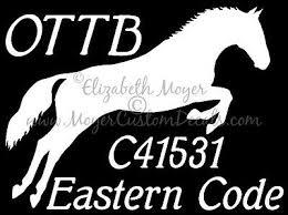 Ottb Personalized Jumper Jumping Horse Decal Choose Color Name And Tattoo Number Ebay