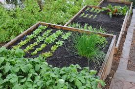 vegetable garden on a slope ideas