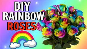 testing diy rainbow roses you