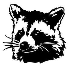 Raccoon Head Decal Sticker