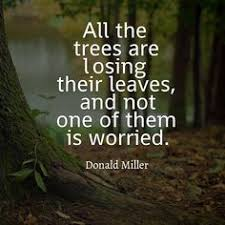 best beauty in nature quotes images nature quotes quotes nature