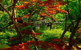 best garden mac wallpapers free hd