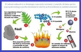 Vida media y carbono 14 (I) | gAZeta