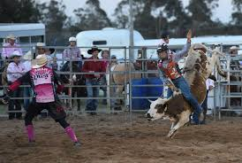 Rodeo Utes & Music Muster at Maryborough Showgrounds - Wesley ... | Buy  Photos Online | Noosa News