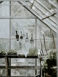 homemade greenhouse ideas diy