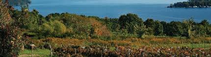 Image result for free Cayuga Lake photos