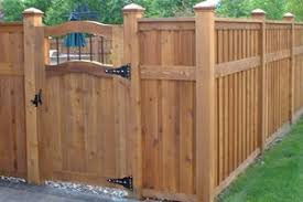 Extending A Fence With Plants Landscaping Network