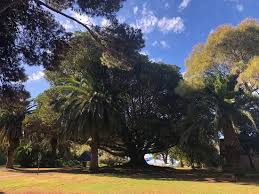 Ada Ryan Gardens (Whyalla) - 2020 All You Need to Know BEFORE You Go (with  Photos) - Tripadvisor