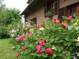 B B The Roses Garden إيطاليا Millesimo Booking Com