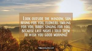 look outside the window sun rising for you flowers smiling for