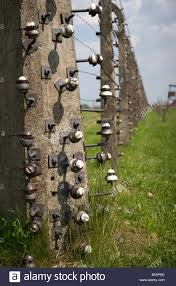 Closeup Of A Corner Post Of The High Voltage Barbed Wire Electric Stock Photo Alamy