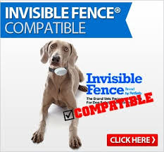 Invisible Fence Compatible Products