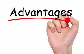 Advantages – Blackbox Software Solutions