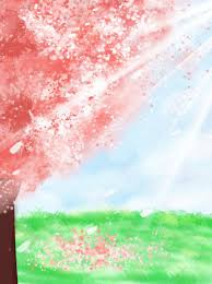 cherry blossom background anime
