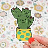 Prickly Pear Sticker Arizona Desert Decals Cat Gift Cactus Cat Plant Parent Succulents Tumbler Sticker Buy Online In Kuwait Missing Category Value Products In Kuwait See Prices Reviews And