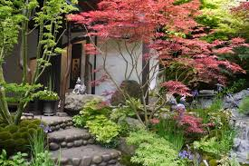 trees for small gardens deciduous