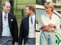 Prince William, Prince Harry formally cut ties with Diana Fund - Insider