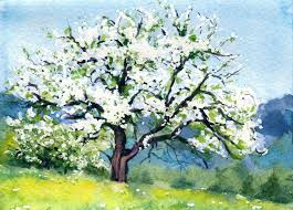 spring landscape greeting card how to