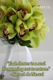 weddings flowers love flower quotes flowers floral quotes