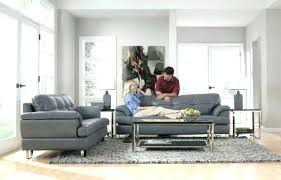 rugs that go with grey couches trabaho me