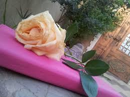 Image About صباح الخير In تصويري By Ibtesam4 On We Heart It
