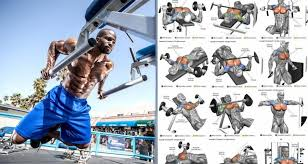 10 best chest exercises for building