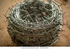 Barbed Wire Rolls Use Fence Prevent Stock Photo Edit Now 694875091
