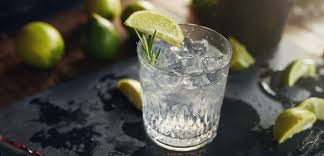 gin and tonic l the perfect