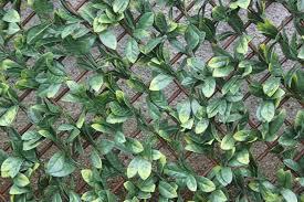 Artificial Hedge Wall Coverings Artificial Hedge Screening Trellis Laurel Leaf Outdoor Ie