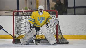 Women's Ice Hockey Hosts No. 1 Wisconsin This Weekend - Long Island  University