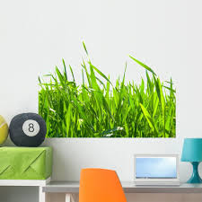 Amazon Com Wallmonkeys Green Grass Wall Decal Peel And Stick Graphic 36 In W X 31 In H Wm191774 Furniture Decor