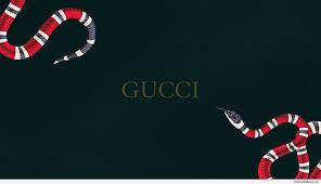 gucci x supreme wallpapers top free