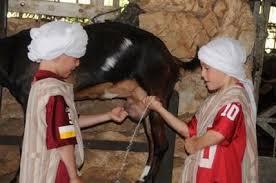 kfar kedem ancient village vered hasharon