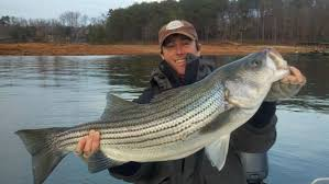 fishing is off the hook at lake lanier