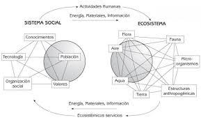ecología humana página web de lorenzo