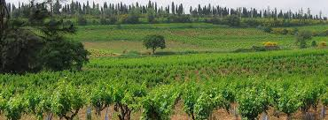 Image result for domaine pegau