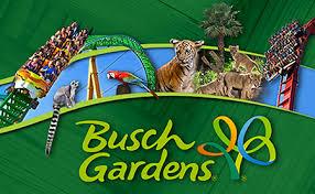 busch gardens tampa single day ticket