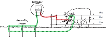 Where To Start How To Build An Electric Fence Gallagher Fence