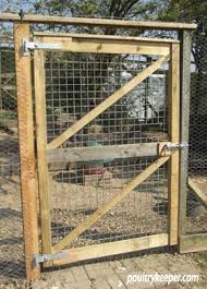 Chicken Runs My Recommendations Keeping Chickens A Beginners Guide