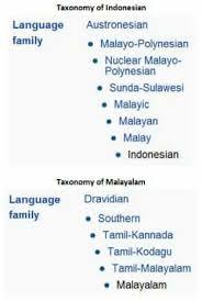 the origin of words between malayalam