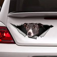 Greyhound Car Decal Greyhound Sticker Etsy