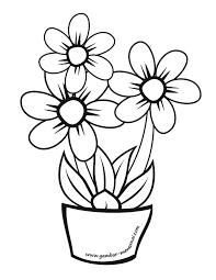 gambar bunga untuk diwarnai gambar mewarnai bunga kreasi warna