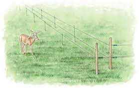 Shock Therapy The Right Electric Fence For Your Farm Myfarmlife Com